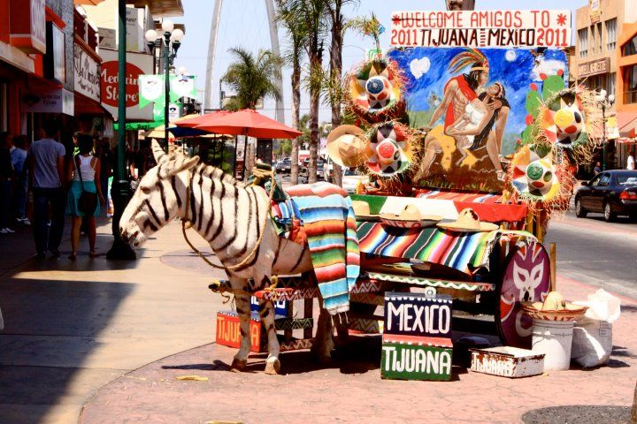 Tips for Getting the Best Prices on Crowns in Tijuana