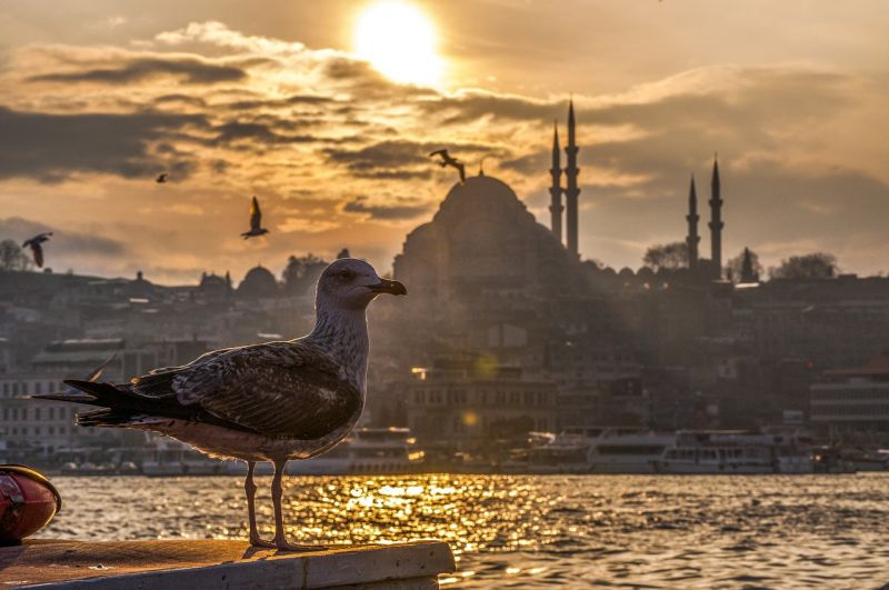 Turkey: Why Istanbul is a Dental Tourism Hotspot