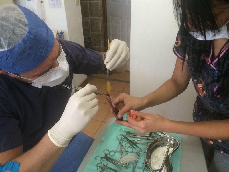Garabito Dental - Dental Clinics in Costa Rica