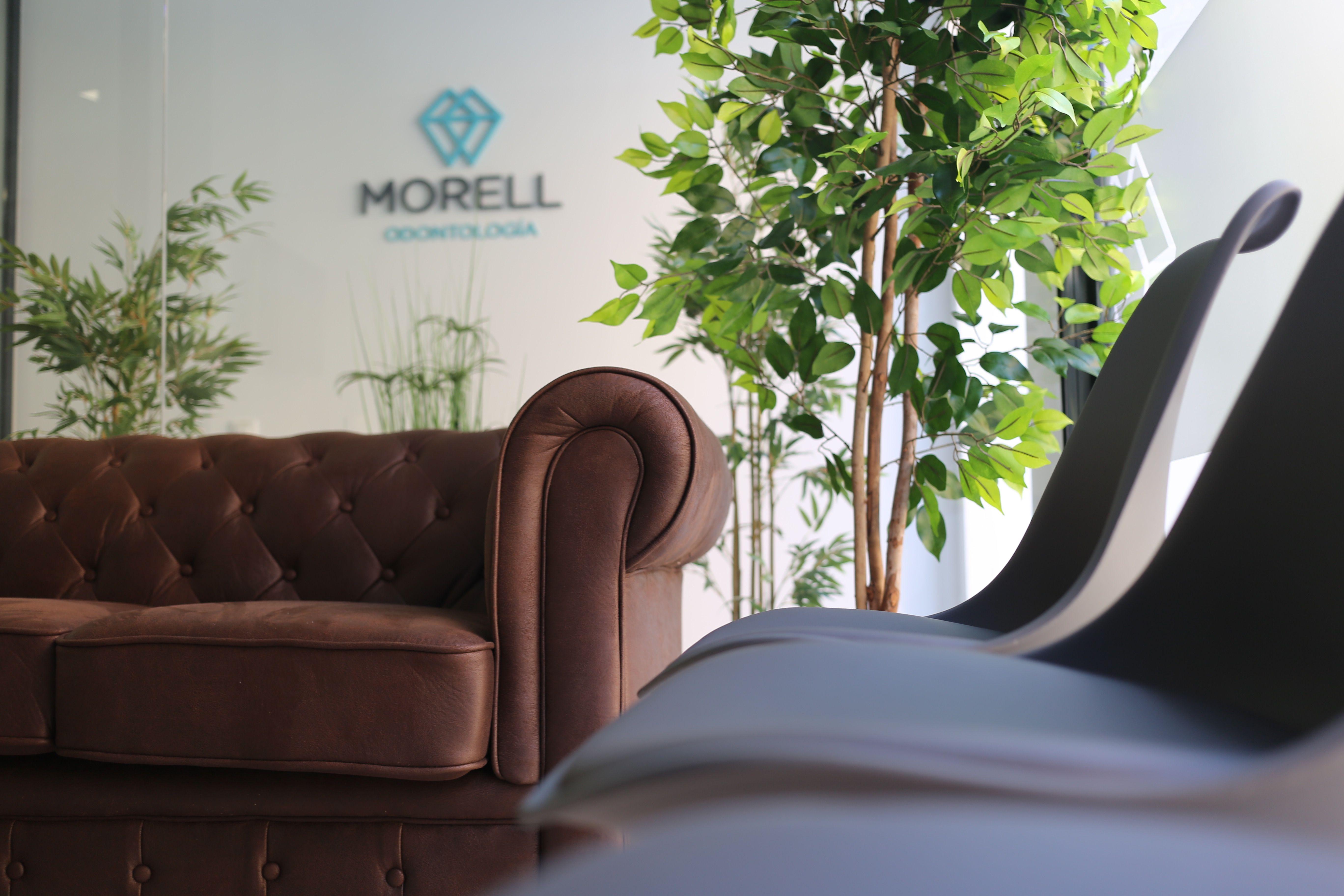 Morell Odontologos