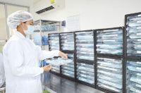 Bangkok International Dental Center (BIDC) - Main Headquarters - Sterilization