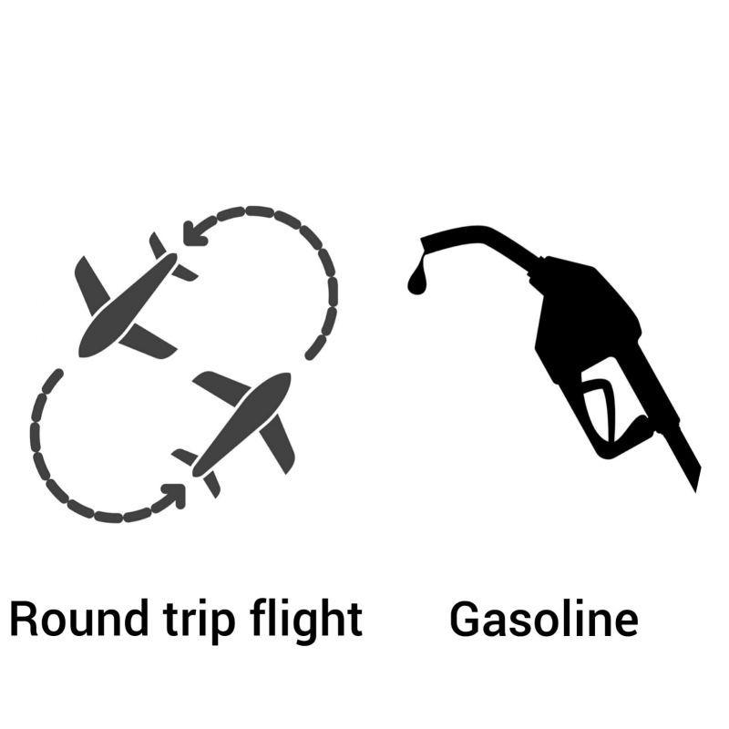 Free Roundtrip Flight Promo